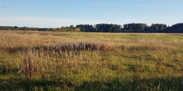 Салминское сельское поселение